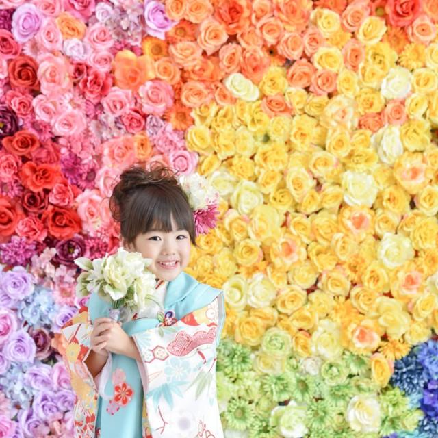 七五三3歳 花壁で写真撮影 新キャンペーン実施中 写真館絹屋熊谷店