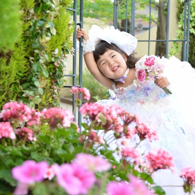 七五三3歳お庭でお花と写真撮影