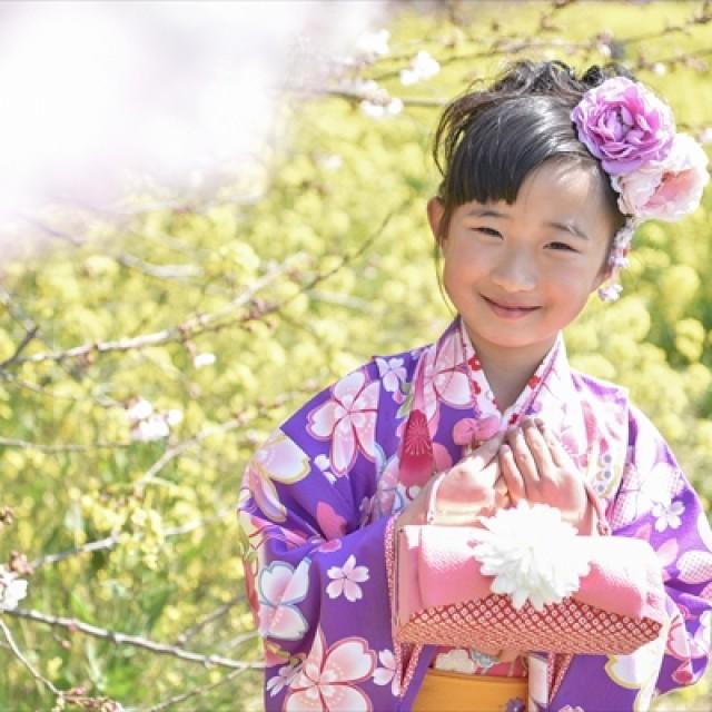 桜×七五三2