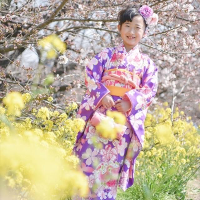 桜×七五三1