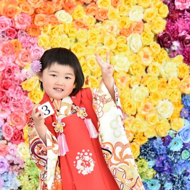 七五三3歳 カラフルなお花の前で「3」をアピール♪映える写真ですね!