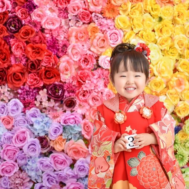 七五三3歳 和装着物スタジオ 映えるお花の壁の前で写真撮影♪