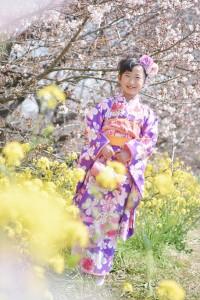 桜&七五三 7歳